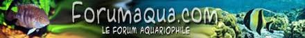 ForumAqua, le Forum Aquariophile
